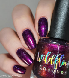Wildflower Lacquer - Up a Creek Vol. 4&5 Collections- The Crowening