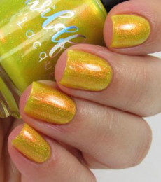 Wildflower Lacquer -  Inaugural Fashion Quad Collection- Eloquence