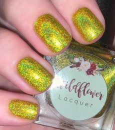 Wildflower Lacquer - Harley's Holos - Sunshine On My Harley